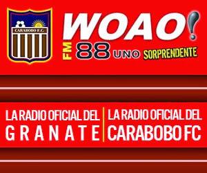 Woao 88.1 FM