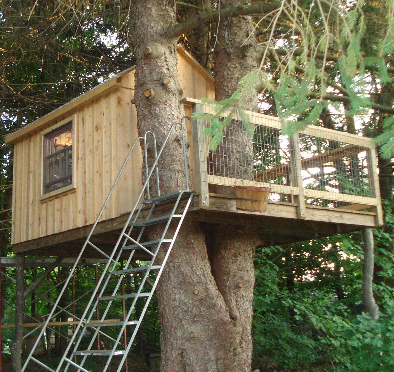 Like the railing on this one tree house fort ideas for Single tree treehouse ideas