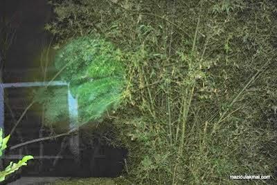 Misteri Penampakan Pintu Ke Alam Bunian 9 Gambar