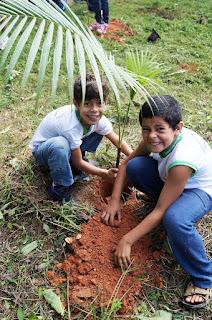 Alunos da Escola Municipal Fazenda Alpina participam do replantio simbólico de mudas no Parque Municipal