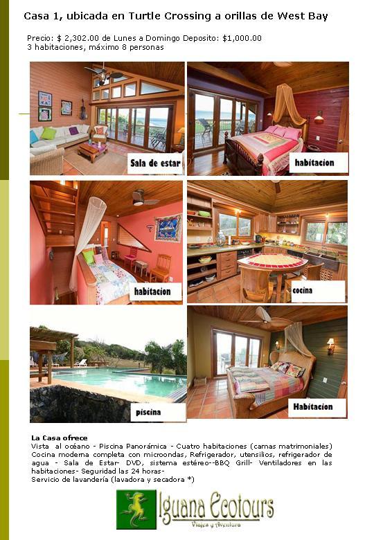 Iguana ecotours for Alquiler apartamentos sevilla semana santa