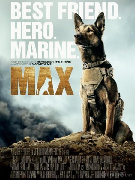 Chú Chó Max Trọn Bộ