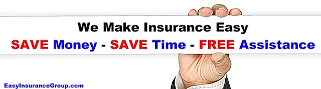 EasyInsuranceGroup.com - We Make Buying All Types of Insurance Easy - Life, Health, Auto, Home, Renters, Pet, Business, Medicare Advantage, Medicare Supplements More