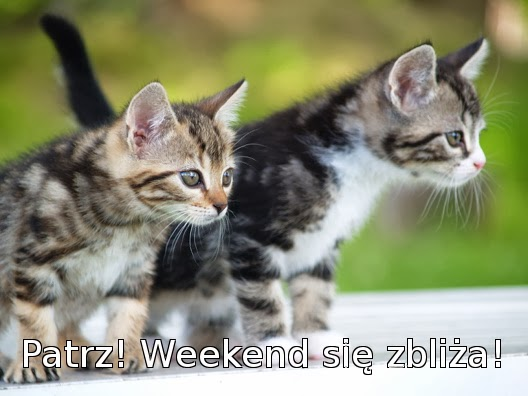 Weekend się zbliża