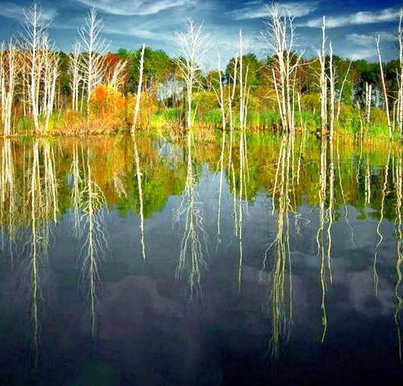 fotografias-de-paisajes-reflejados-en-el-agua