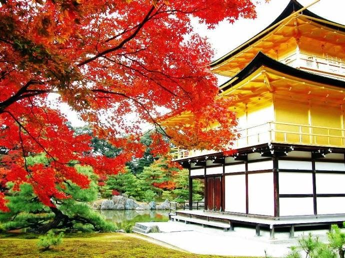 Fantastic Pavilion Temple/ Kinkaku-Ji