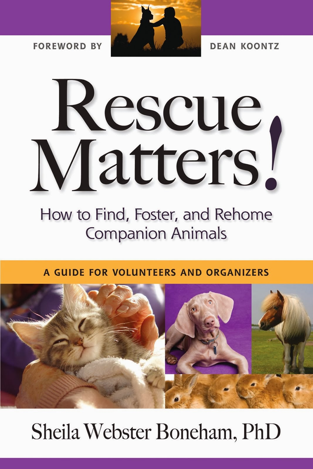 Rescue Matters: How to Find, Foster, and Rehome Companion Animals
