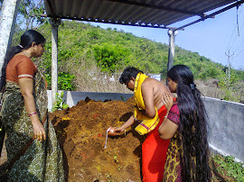 Manavu offering milk to Lord Nagendra swamy