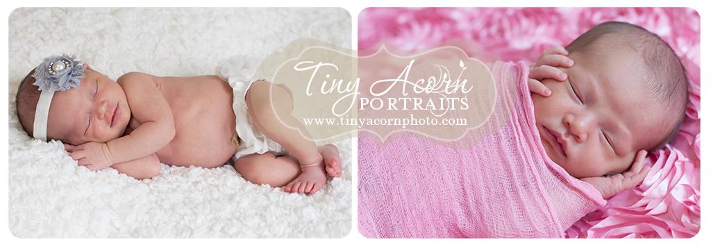 Newborn Photographer Minnesota
