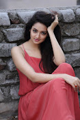 Shanvi latest Portfolio Photos-thumbnail-20