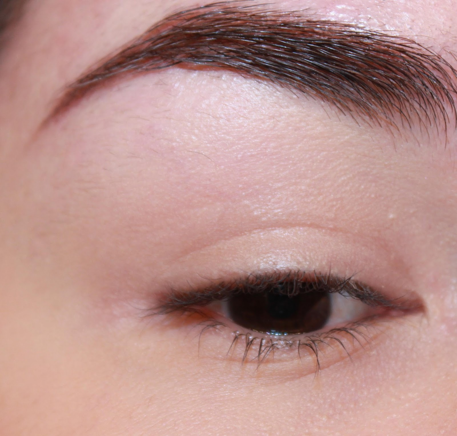 The Dark Side Of Beauty First Impression Per Fekt Brow Perfection Gel