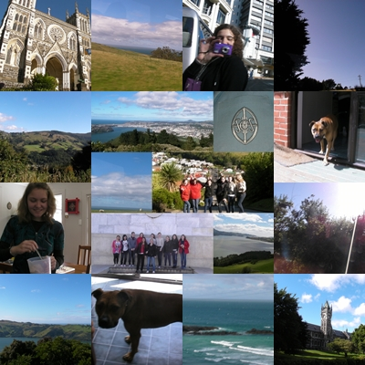dunedin guys Find meetups and meet people in your local community who share your interests.