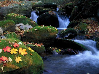Autumn-River-Wallpapers