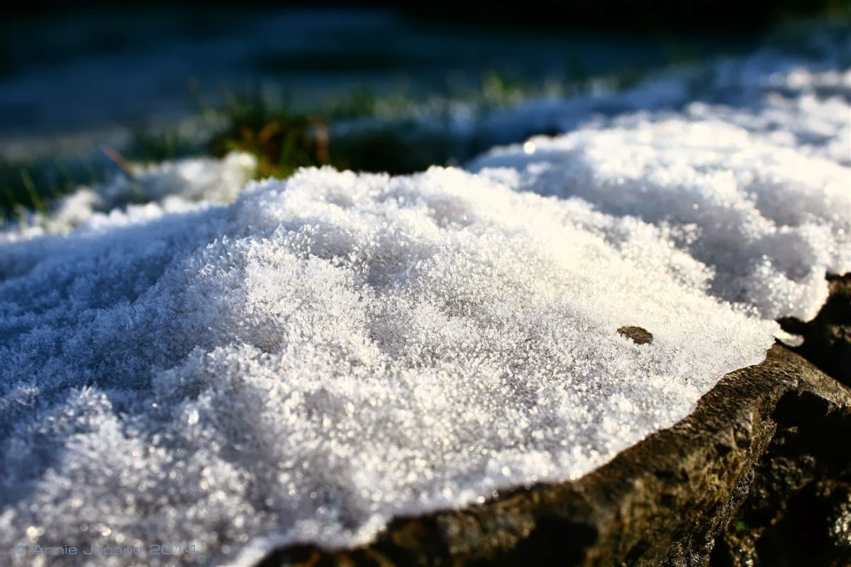 image of snow on the edge of a lawn
