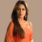 Mahima Chaudhary Hot Photos
