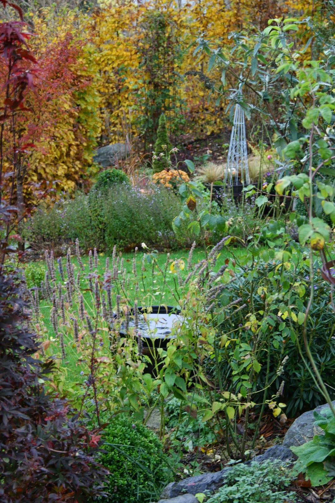 trädgårdsblogg höst