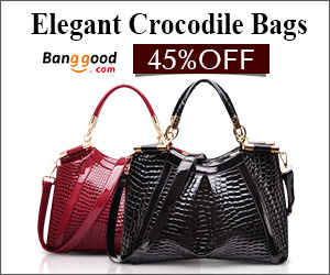 www.banggood.com
