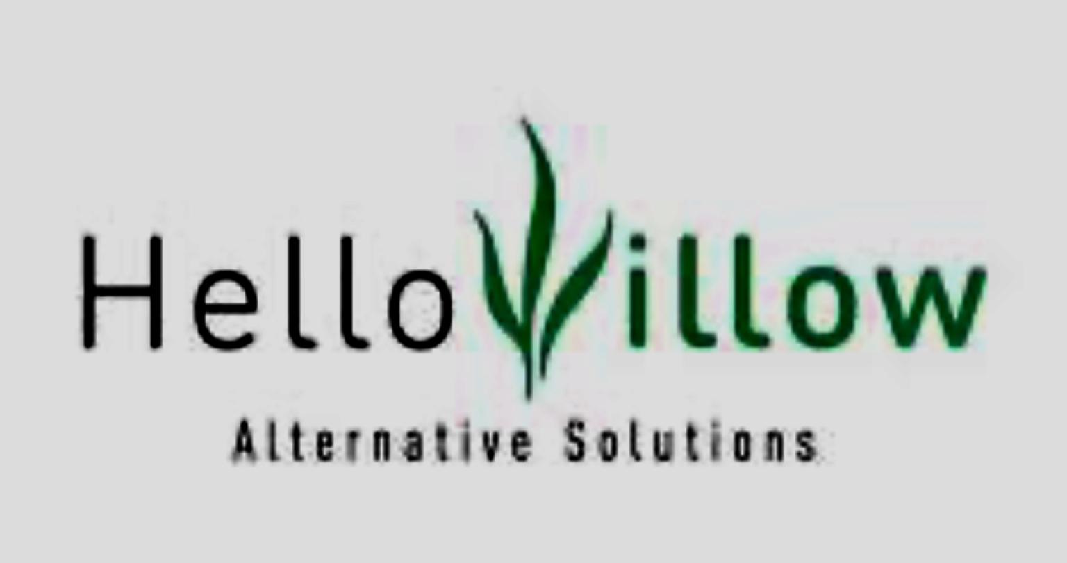 Collaborazione Hellowillow