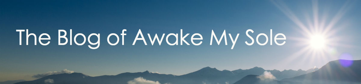 The Blog of Awake My Sole
