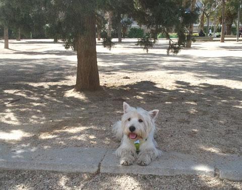 Lucas en el Parque