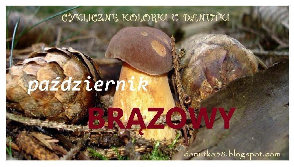 http://danutka38.blogspot.com/2014/10/cykliczne-kolorki-u-danutki-pazdziernik.html