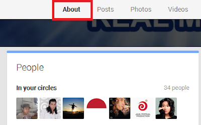 Widged Google+ Folowers, Followers list is private