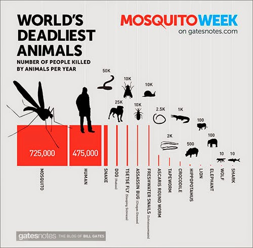 El Mosquito: El animal más mortífero para los seres humanos