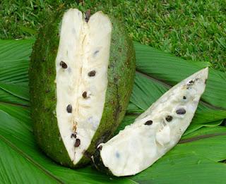Manfaat buah dan daun sirsak