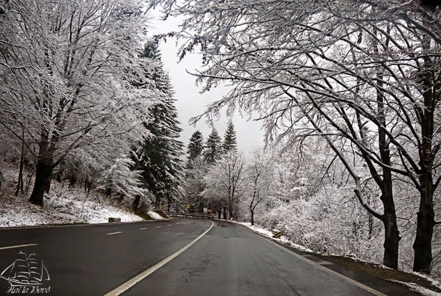 peisaj iarna serpentine predeal