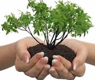 Pengertian Asas keterpaduan dalam Lingkungan hidup