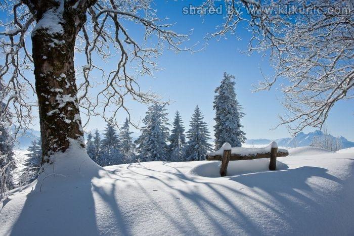 http://3.bp.blogspot.com/-7oW7oQLZUbE/TXltmI6PObI/AAAAAAAAQ0Y/TNBXpERJyIU/s1600/winter_47.jpg