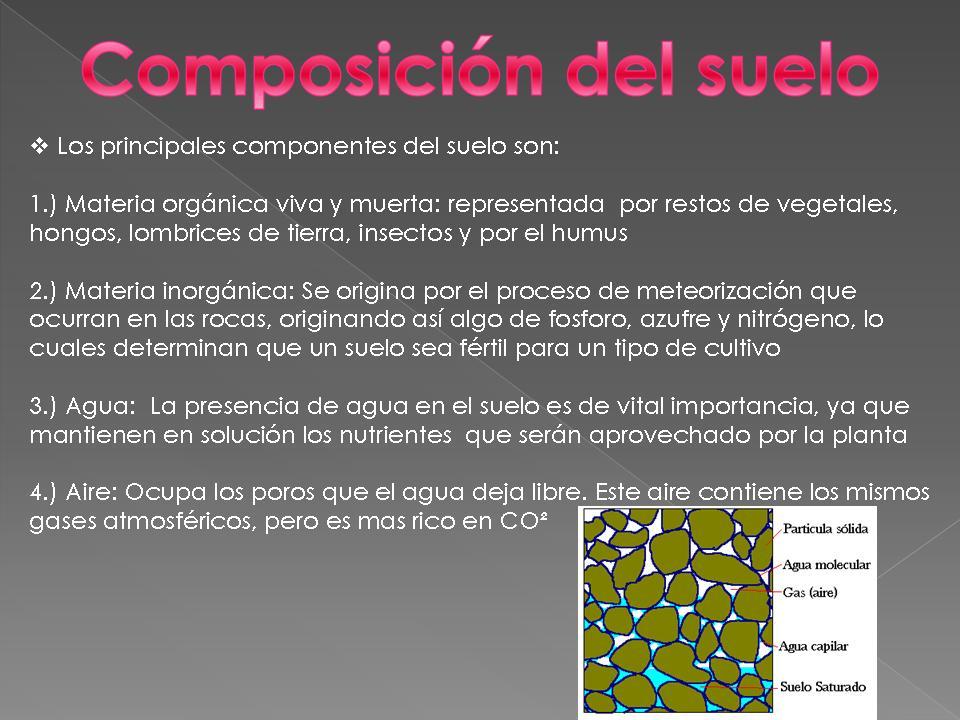 El suelo y sus tipos for Componentes quimicos del suelo