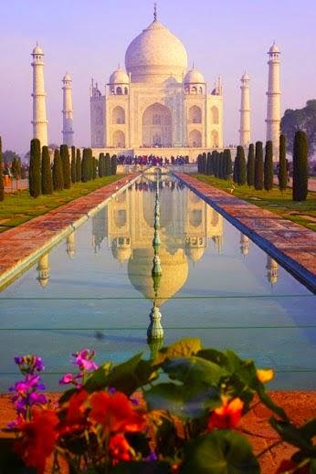 Indianflower Taj Mahale Symbol Of Love