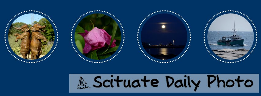 Scituate Daily Photo