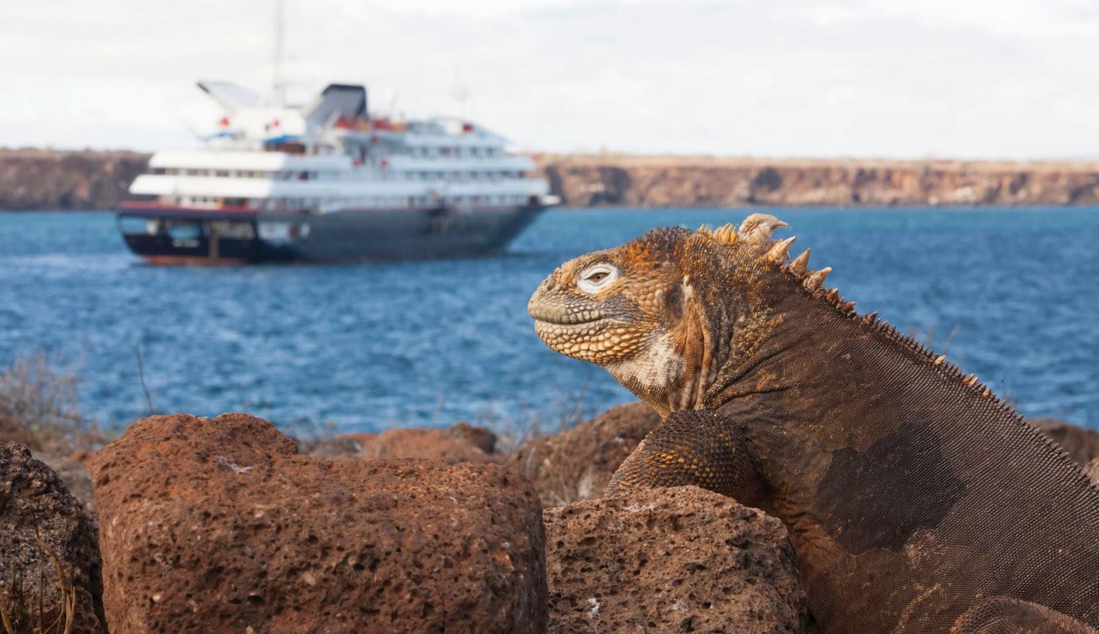 Imagen Crucero Aventura Expedición Naturaleza Ex12911