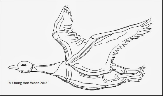 Wild Geese Drawing Drawing Tools in ms Word