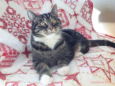 Suzi the Cat on Nearly Insane Quilt
