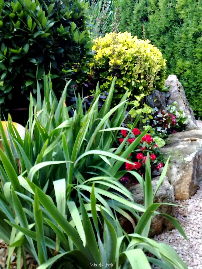 Zona baja del jardín