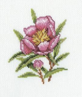 RTO, Цветок олеандра