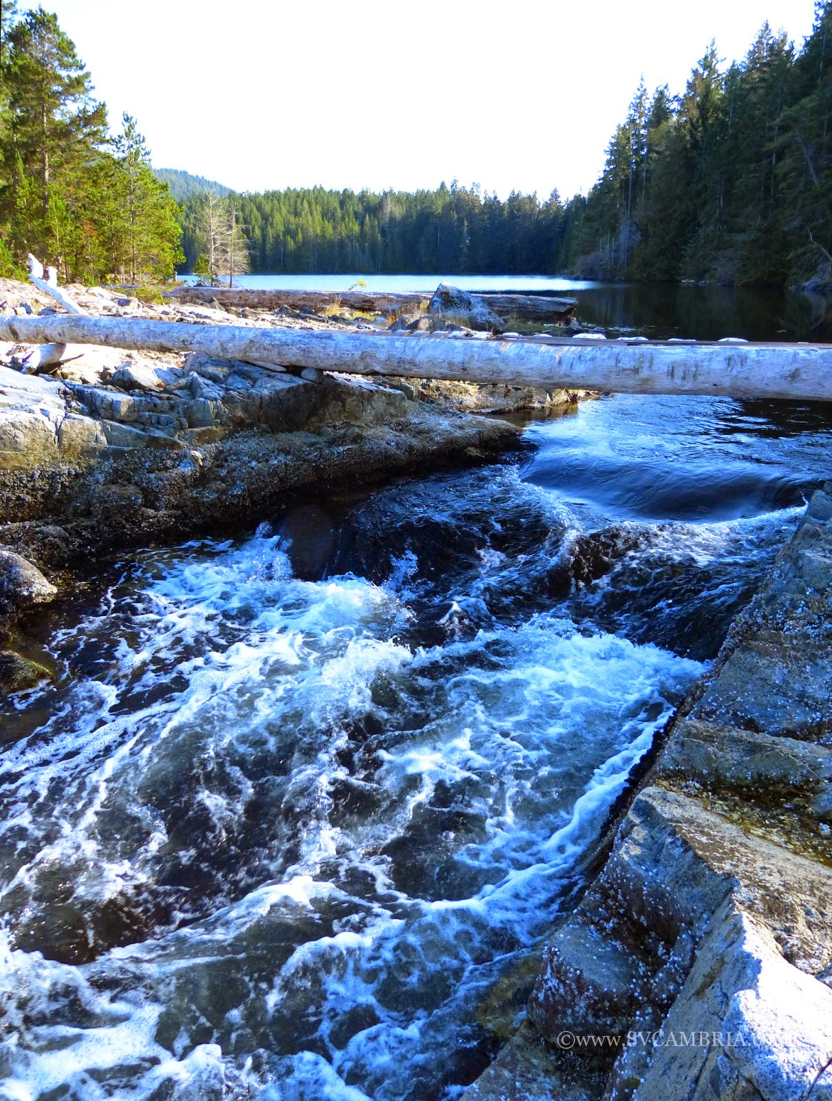 The rapids at the lagoon entrance in Carrington Bay, Cortes Island.