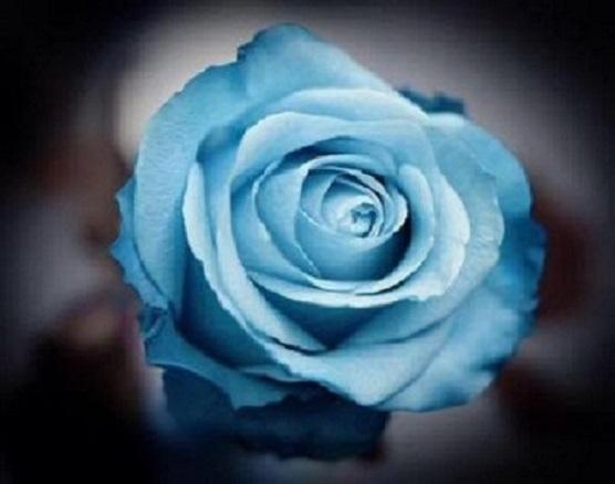 http://mariapessoa.blogspot.com