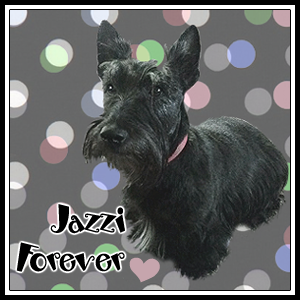 Jazzi my Gal pal