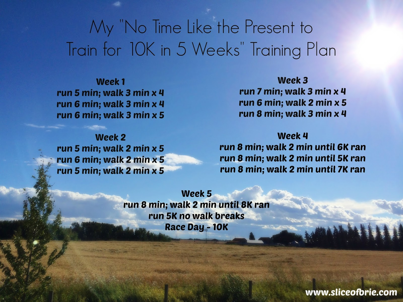 Calgary Marathon Training Plan