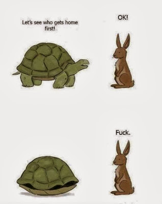 funny pictures, animals, cartoons, jokes, turtle, rabbit, race