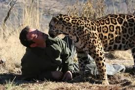 Kevin Richardson plays with leopards too