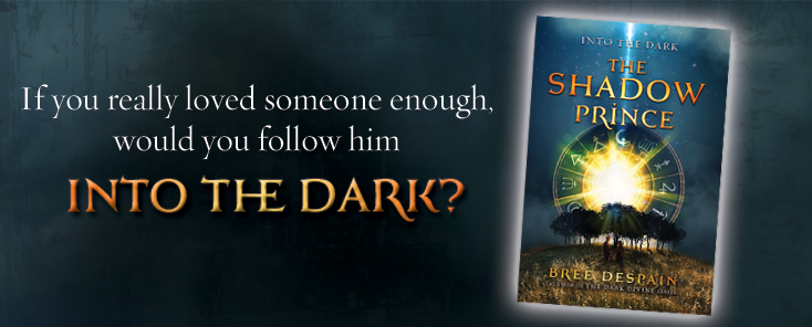 Into the Dark- The Shadow Prince by Bree Despain