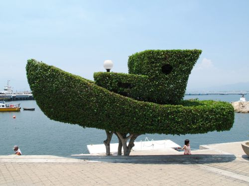 Topiary Art Pictures