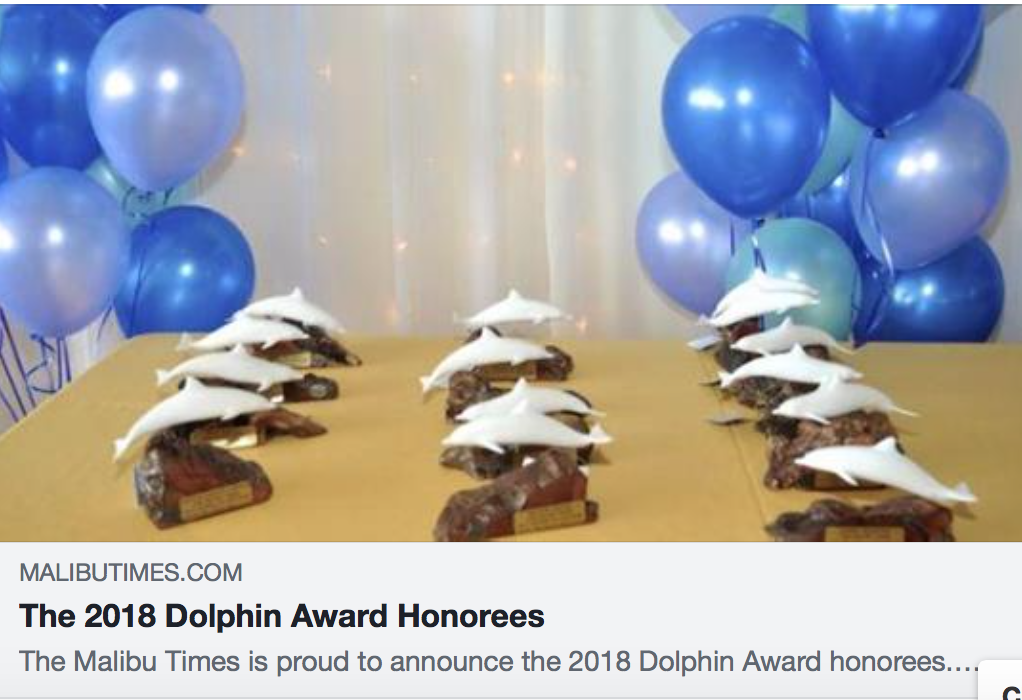 Honoree! Citizens of the Year Dolphin Award Program, 2019