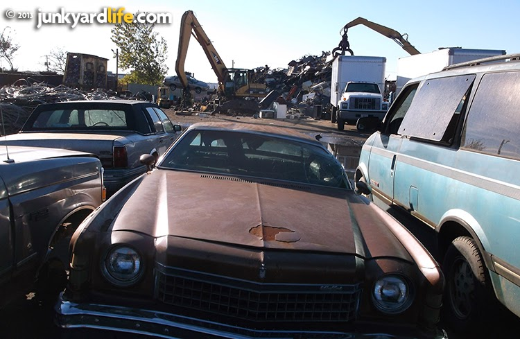 Scrap yard monsters waiting to devour this 1974 Chevy Monte Carlo.