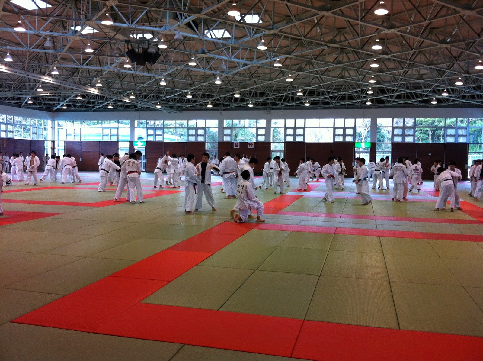 judo japonés